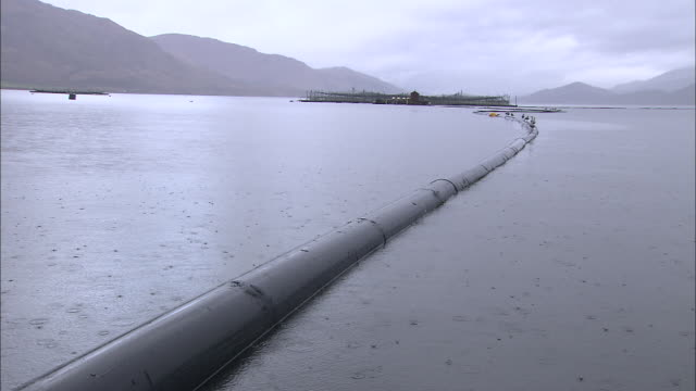a pipeline stretches across a harbor in scotland. - pipeline stock videos & royalty-free footage