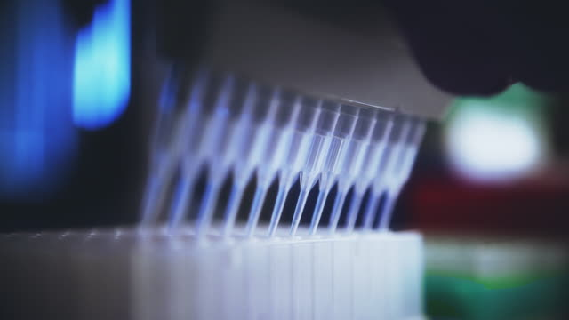 pipette bring used in biomedical research - pipette stock videos & royalty-free footage