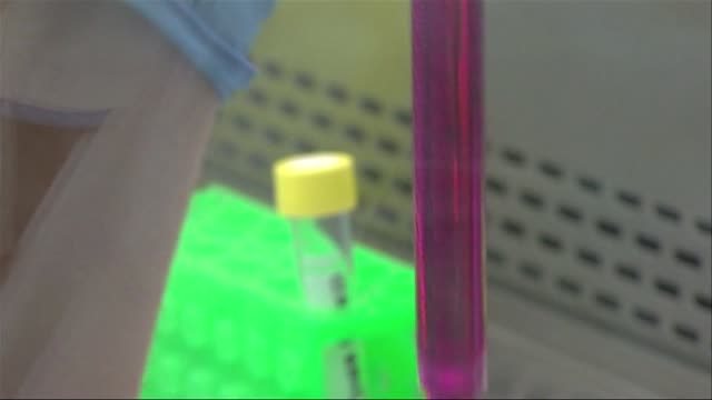 pipette reagent sampling - stem cell stock videos & royalty-free footage