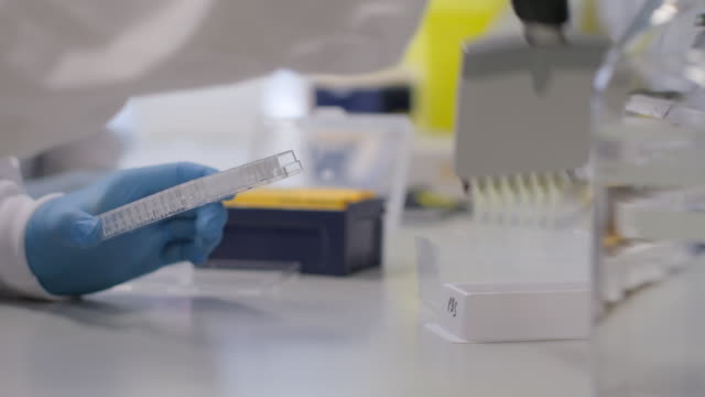 pipettes are used for samples in a lab - biochemistry stock videos & royalty-free footage