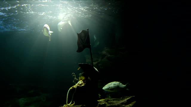 vídeos de stock, filmes e b-roll de tesouro dos piratas - fundo do mar