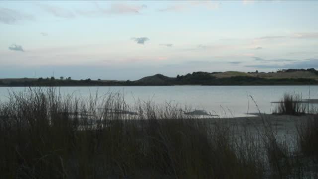 ws placid lake at dawn / kaiiwi lakes, new zealand - new zealand stock-videos und b-roll-filmmaterial