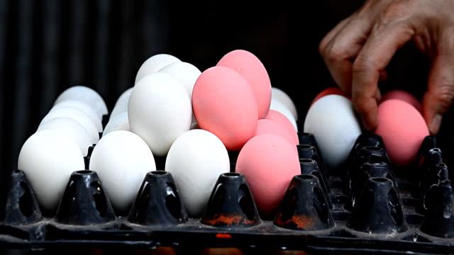 placing eggs into a carton - carton stock videos & royalty-free footage