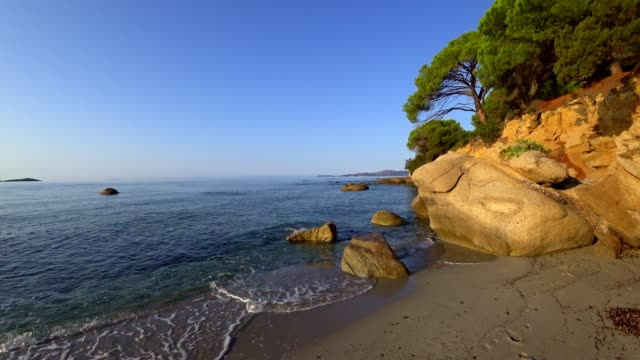 vídeos de stock e filmes b-roll de plage de palombaggia, corsica, france, at sunrise - pinheiro