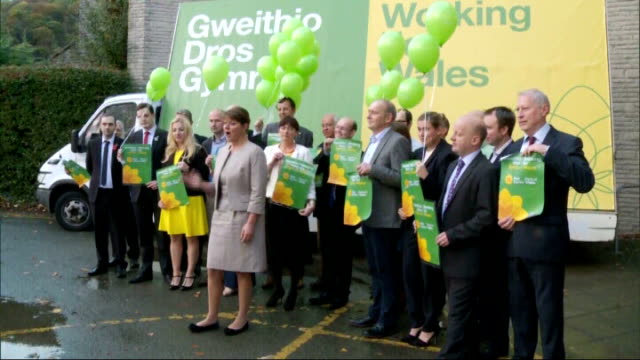 plaid cymru could 'hold balance of power' after 2015 general election says party leader leanne wood wales llangollen ext leanne wood photocall with... - plaid stock videos & royalty-free footage