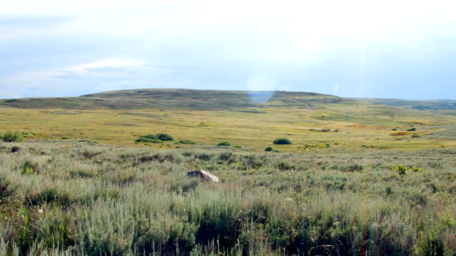 plain of sagebrush summit steens mountain near malhuer wildlife refuge 35 - セージブラッシュ点の映像素材/bロール