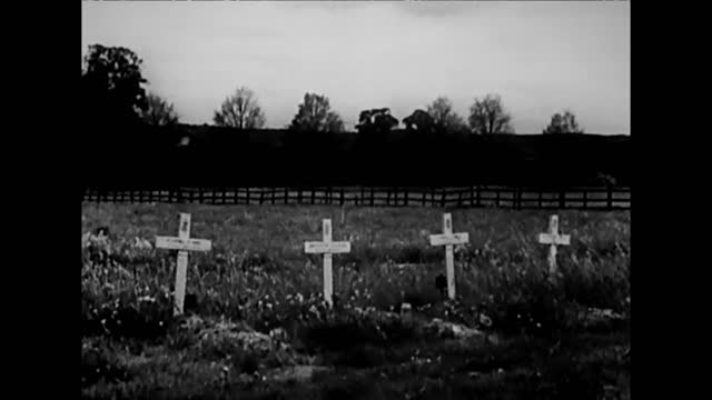 plane wrecks / luftwaffe military cemetery - rubble stock videos & royalty-free footage