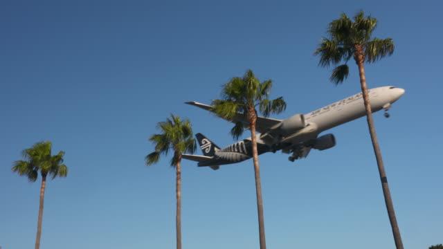 Planes & Palms