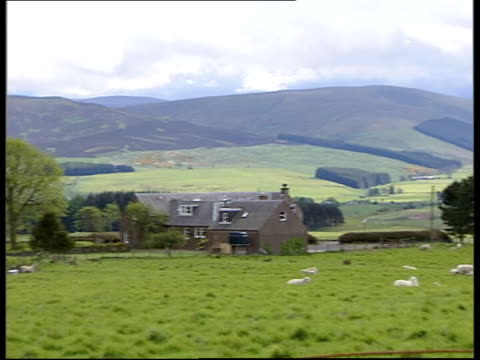 planning for g8 summit in gleneagles scotland perthshire gv sheep grazing on farmland pan ms sheep and lamb laying in field - perthshire stock videos & royalty-free footage