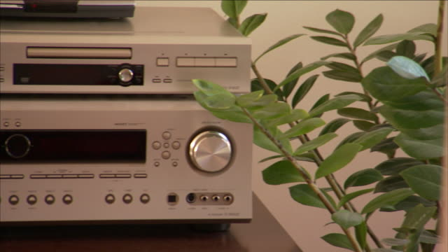 a plant grows next to home stereo equipment. - amplifier stock videos & royalty-free footage