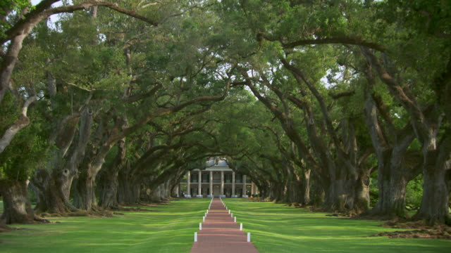 ws plantation house at end of tree lined path / new orleans, louisiana, united states - louisiana stock-videos und b-roll-filmmaterial