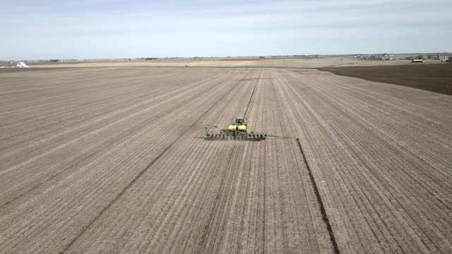 vidéos et rushes de planting corn in iowa - cereal plant