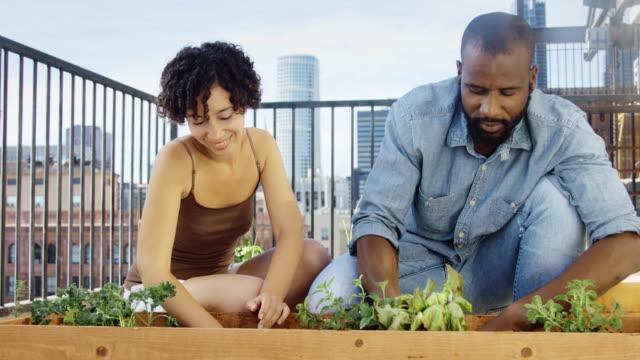 Planting Herbs on Rooftop Garden - Hand-Held Shot