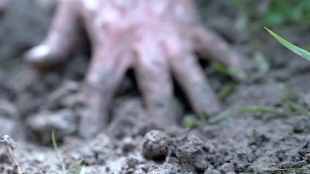 slo mo planting - mud stock videos & royalty-free footage
