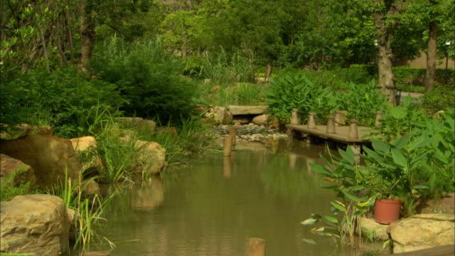 ws plants and bushes surrounding canal, vanke town dreamworld complex, shenzhen, guangdong, china - 整形式庭園点の映像素材/bロール