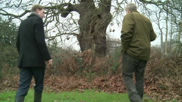 Plants and Christmas in Richmond Park ENGLAND London Richmond Park EXT Adam Curtis along with reporter and interview SOT CUTAWAY close shot holly...