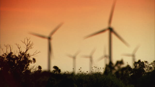 SLO MO WS R/F Plants and silhouettes of wind turbines against orange sky at sunset / Junction, Texas, USA