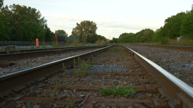 plants growing on rails - railroad track stock videos & royalty-free footage