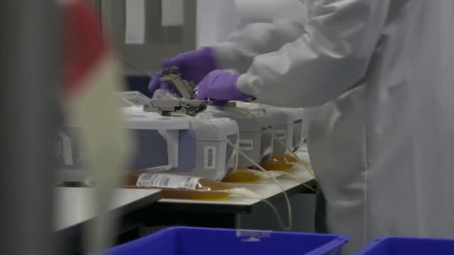 plasma being collected and stored - compartment stock videos & royalty-free footage