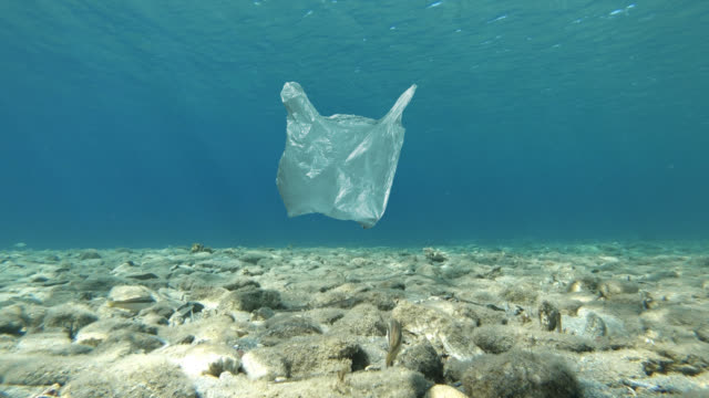 plastic bag floating in sea - cellophane stock videos & royalty-free footage