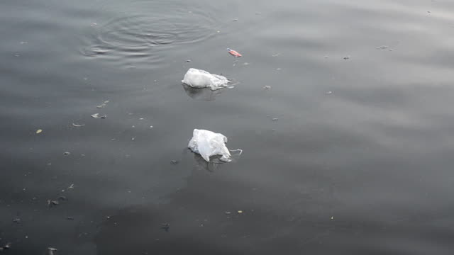 plastic bag floating on dirty water. - imperfection stock videos & royalty-free footage