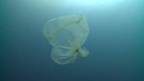 plastic bag in sea, resembling jellyfish to potential predators, southern visayas, philippines - floating on water stock videos & royalty-free footage