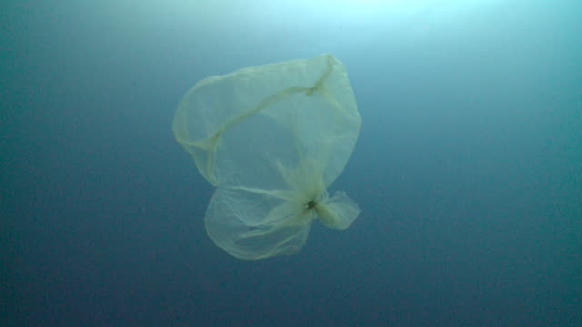 vídeos de stock e filmes b-roll de plastic bag in sea, resembling jellyfish to potential predators, southern visayas, philippines - poluição