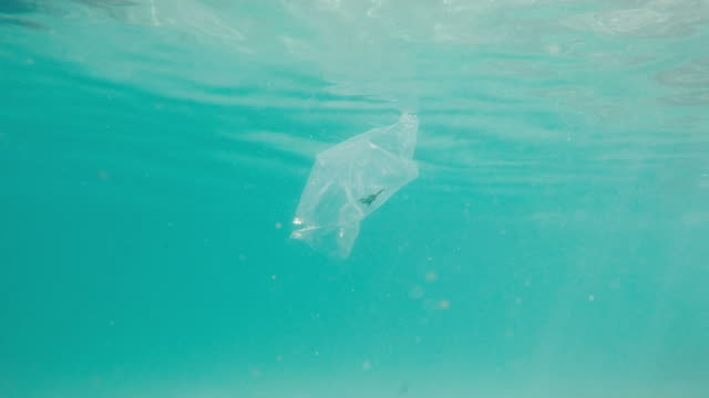 plastic bag in the ocean - plastic bag stock videos and b-roll footage