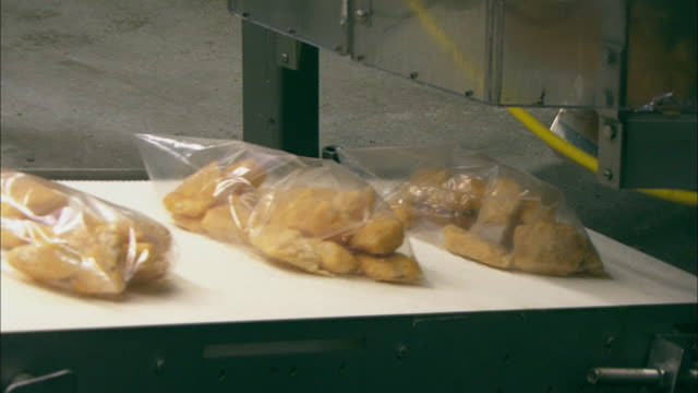 plastic bags of breaded fish roll along a conveyor belt. - breaded stock videos and b-roll footage