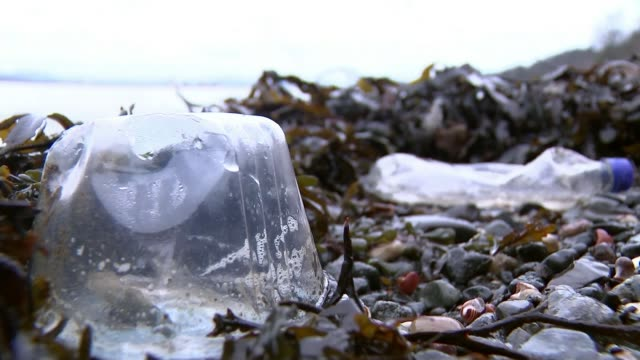 plastic bottle deposit scheme to be introduced by government; t09021748 / tx scotland: fife: ext plastic bottle on shoreline of firth of forth with... - fluss firth of forth stock-videos und b-roll-filmmaterial