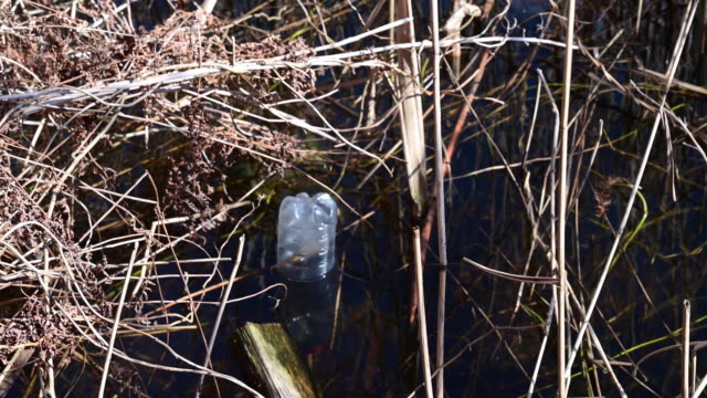 plastic bottle floating in the water of a lake. germany. - stahlfass stock-videos und b-roll-filmmaterial