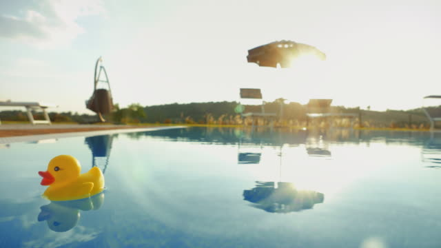plastic duck in a summer resort´s swimming pool - swimming pool stock videos & royalty-free footage