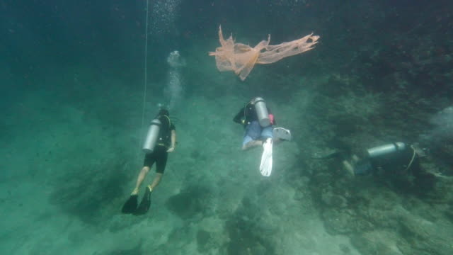 plastic pollution floating near underwater scuba divers - ross sea stock videos & royalty-free footage