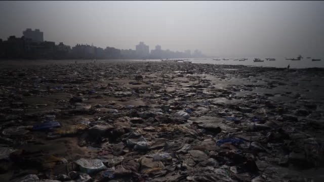plastic waste and rubbish on beach - hygiene stock videos and b-roll footage