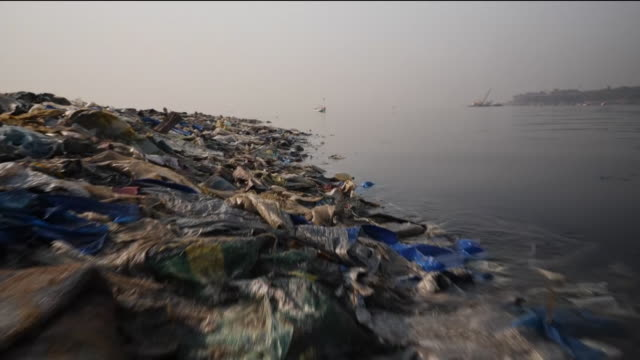 vidéos et rushes de plastic waste and rubbish on beach - inde