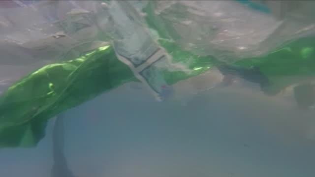 Plastic waste floating in water