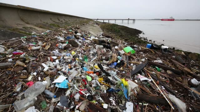 plastics and other detritus line the shore of the thames estuary on january 2 2018 in cliffe kent tons of plastic and other waste lines areas along... - water pollution stock videos & royalty-free footage