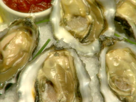 a plate of oysters on the half shell - savoury food stock videos & royalty-free footage