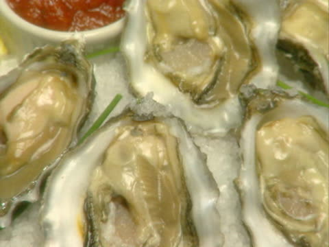 zo cu plate of oysters with shells  - savoury food stock videos & royalty-free footage