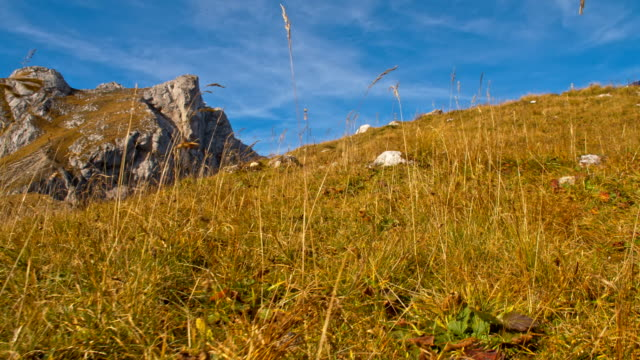 ws la plateau in the mountains - julian alps stock videos and b-roll footage