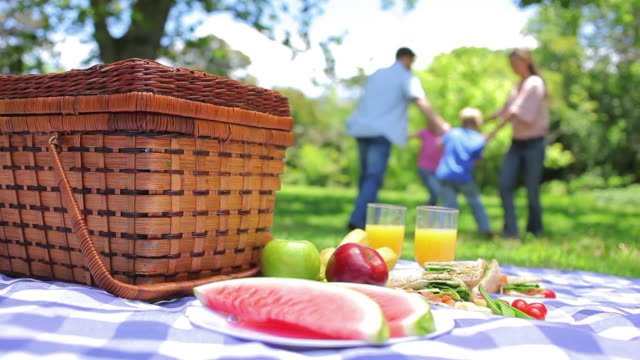 family dancing in a ring in the background with a platter on a picnic basket in the foreground - blanket background stock videos & royalty-free footage