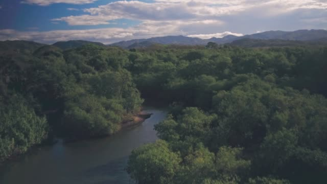 playa buena vista beach river landscape, guanacaste province, costa rica. aerial drone view - river stock videos & royalty-free footage