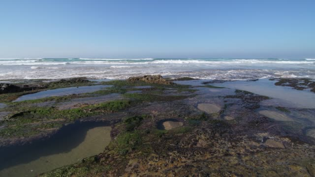 playa de canallave rocks with tide pools (canallave beach). canallave is a very popular beach for surfers known for its strong surf. - tide pool stock videos & royalty-free footage