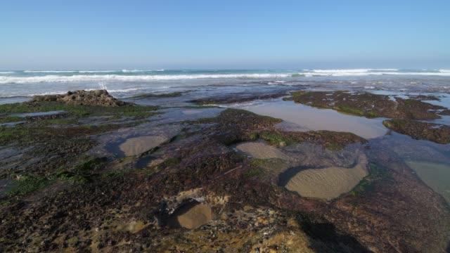 vídeos y material grabado en eventos de stock de playa de canallave rocks with tide pools (canallave beach). canallave is a very popular beach for surfers known for its strong surf. - marisma
