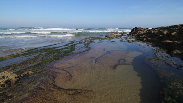 playa de canallave rocks with tide pools (canallave beach). canallave is a very popular beach for surfers known for its strong surf. - gezeitentümpel stock-videos und b-roll-filmmaterial
