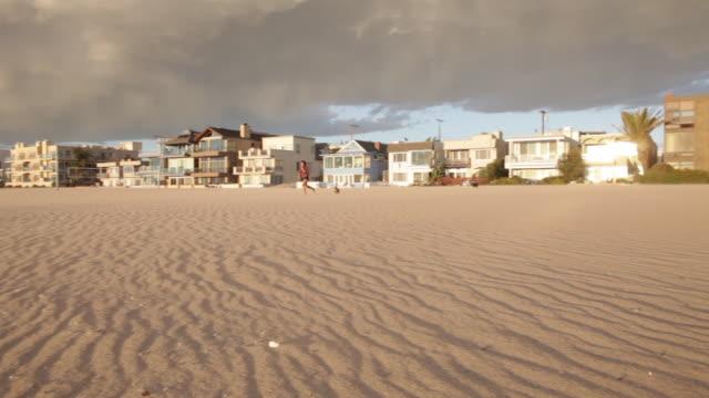 vídeos y material grabado en eventos de stock de playa del rey next to venice beach in los angeles, california usa - terrier
