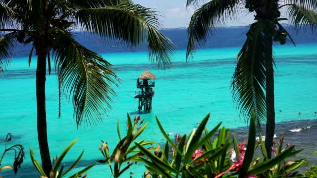 vídeos y material grabado en eventos de stock de playa norte, isla mujeres, méxico - cayo