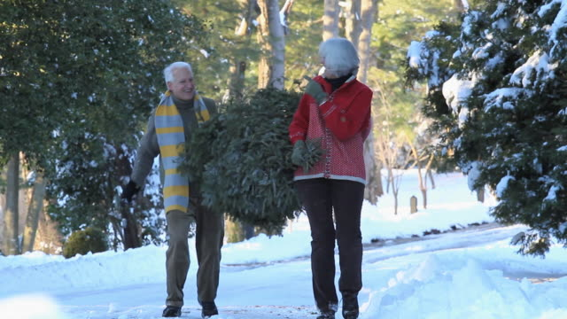 WS MS Playful Baby Boomer couple carrying Christmas tree and throwing snowballs / Richmond, Virginia, USA