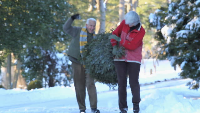 ws ms playful baby boomer couple carrying christmas tree and throwing snowballs / richmond, virginia, usa - see other clips from this shoot 1760 stock videos & royalty-free footage