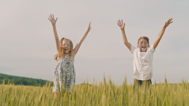 ms playful boy and girl jumping up from behind wheat in rural field - sister stock videos & royalty-free footage